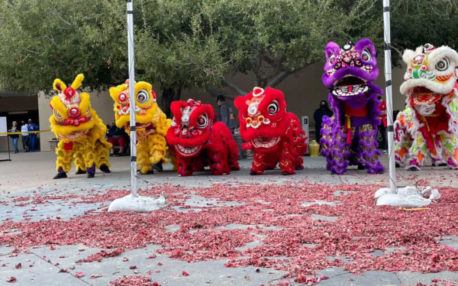 Multiple lions cautiously approaching the confetti shreds of red paper in the aftermath of firecrackers.